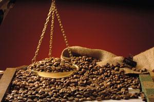 Co vše skrývá káva